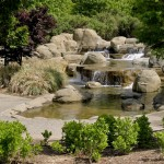 Japanese Garden Waterfall (14)