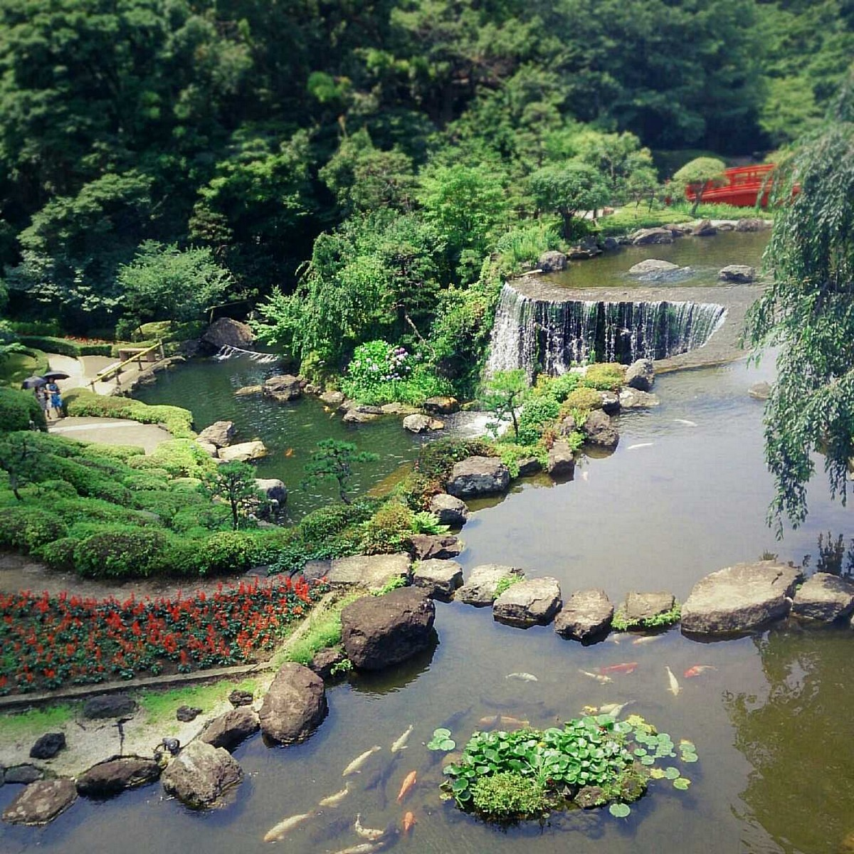 Japanese Garden Waterfall (15)