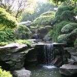 Japanese Garden Waterfall (17)
