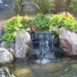 Japanese Garden Waterfall (20)