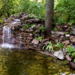Japanese Garden Waterfall (25)