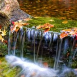 Japanese Garden Waterfall (30)