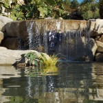 Japanese Garden Waterfall (37)
