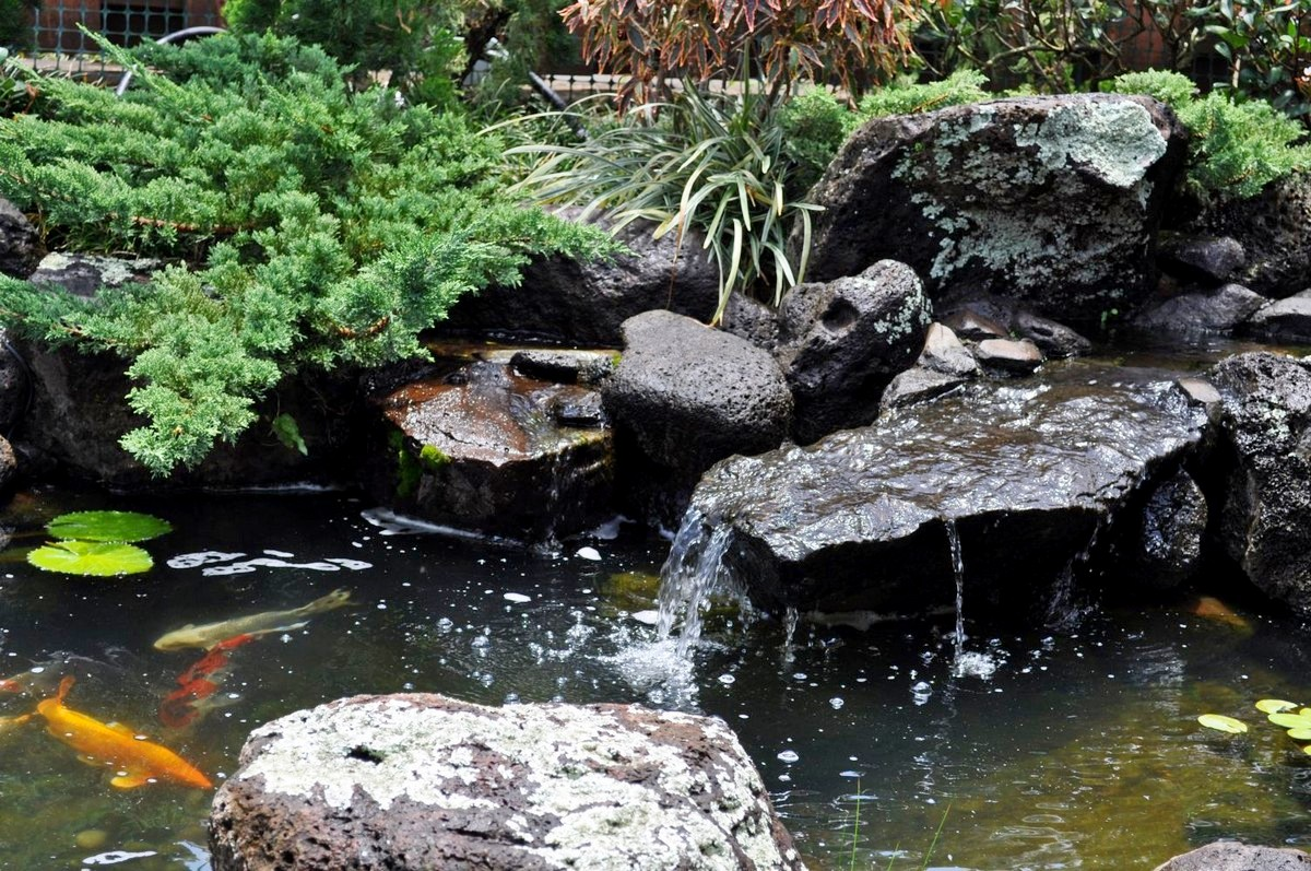 Japanese Garden Waterfall (40)