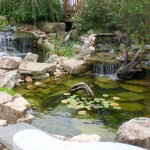 Japanese Garden Waterfall (43)