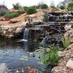 Japanese Garden Waterfall (44)