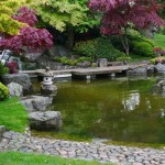 Japanese Garden Waterfall (48)
