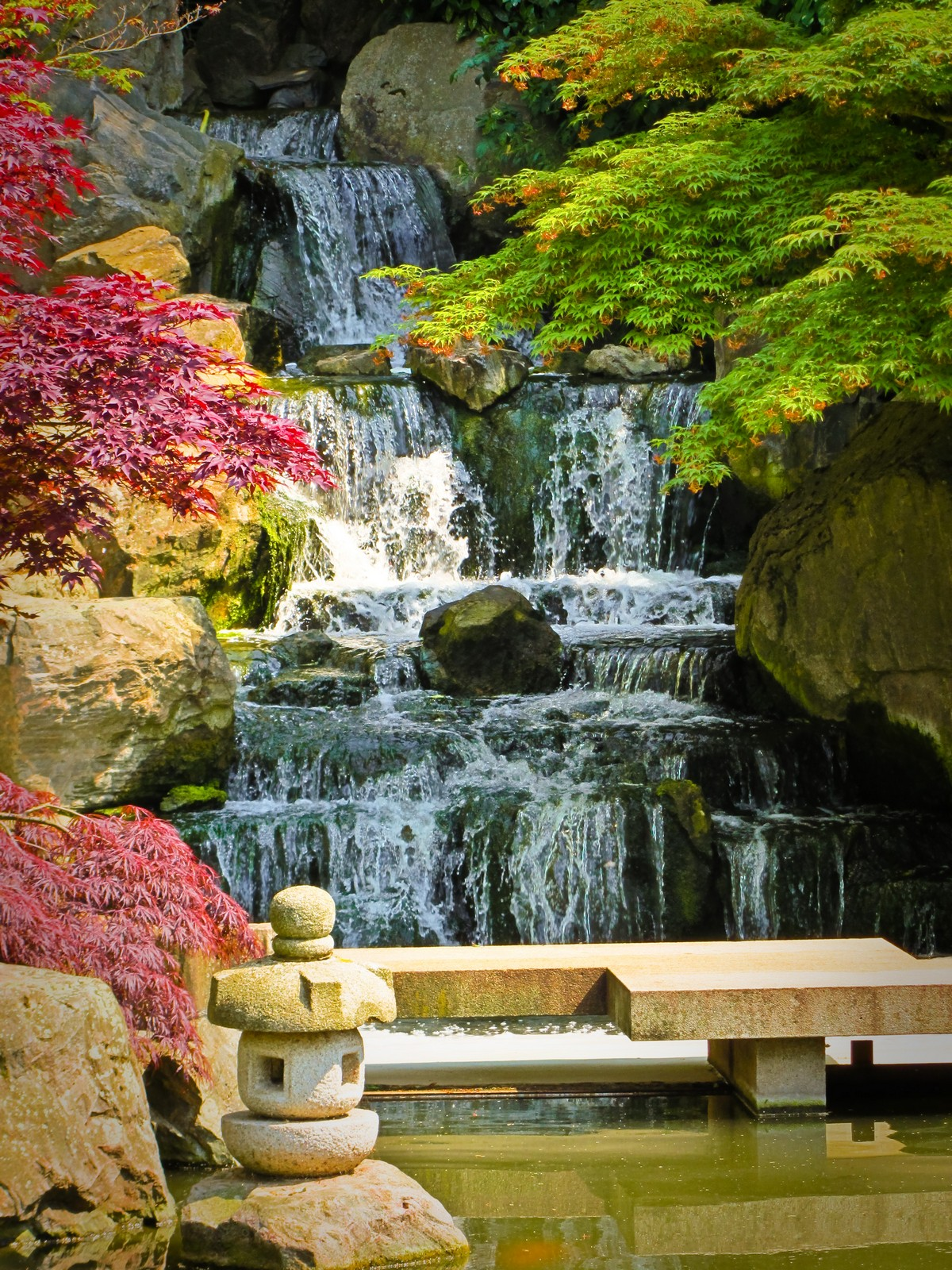 Japanese Garden Waterfall (49)
