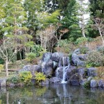 Japanese Garden Waterfall (5)