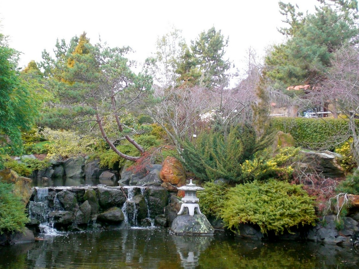 Japanese Garden Waterfall (50)