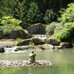 Japanese Garden Waterfall (51)