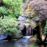 Japanese Garden Waterfall (54)