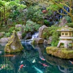 Japanese Garden Waterfall (55)