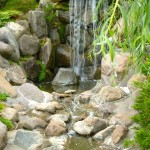 Japanese Garden Waterfall (67)
