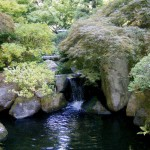 Japanese Garden Waterfall (69)