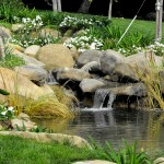 Japanese Garden Waterfall (74)