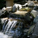 Japanese Garden Waterfall (77)