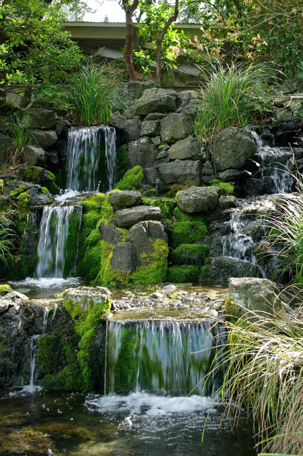 Japanese Garden Waterfall (78)