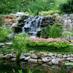 Japanese Garden Waterfall (80)