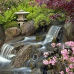 Japanese Garden Waterfall (88)