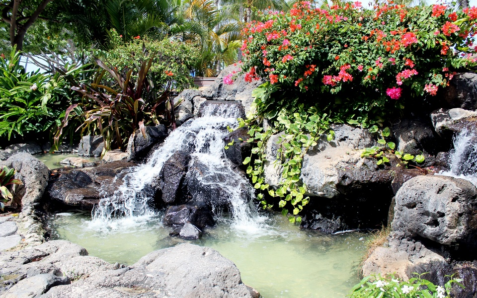 Japanese Garden Waterfall (89)