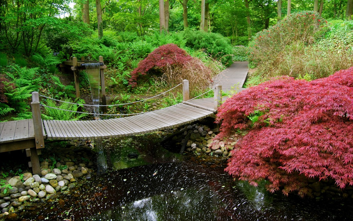 Japanese Garden Waterfall (9)