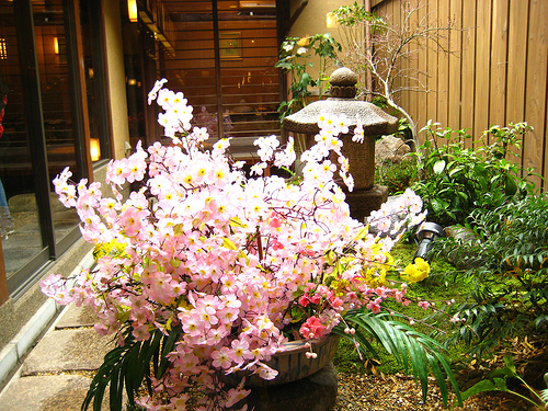 Japanese Indoor Gardens (19)