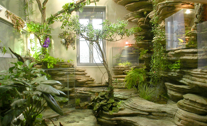 Japanese Indoor Gardens (2)