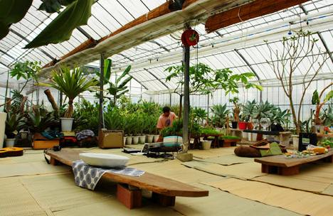 Japanese Indoor Gardens (35)
