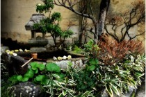 Small Japanese Garden Design (2)