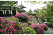 The Art of the Japanese Garden (24)