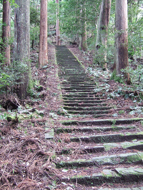 The Basic Steps in Building Japanese Garden (7)