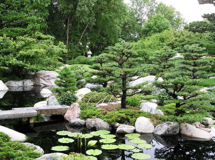 The Tranquil Japanese Garden (11)