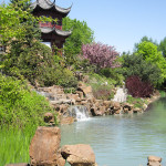 The Tranquil Japanese Garden (18)