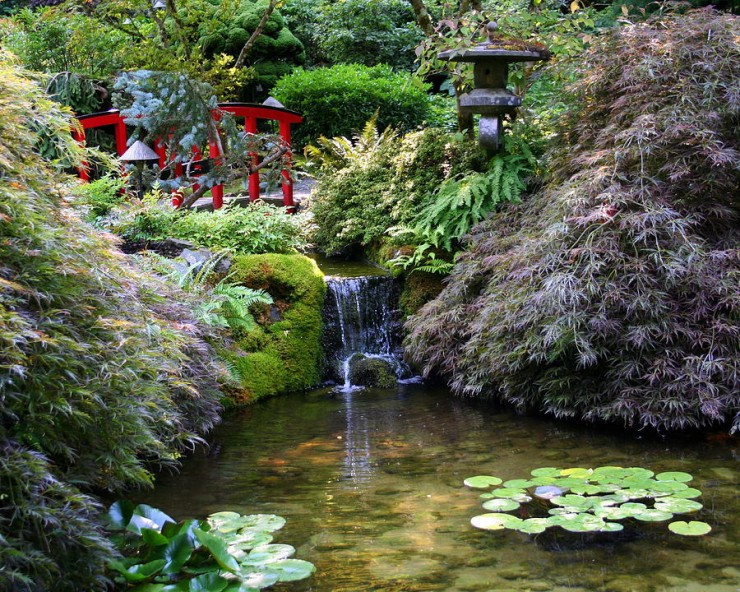 The Tranquil Japanese Garden (8)