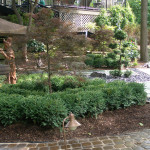 The True Spirit of Japanese Gardens (10)