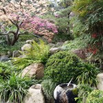 The True Spirit of Japanese Gardens (12)