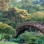 The True Spirit of Japanese Gardens (16)
