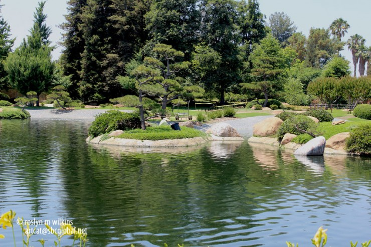 The True Spirit of Japanese Gardens (22)