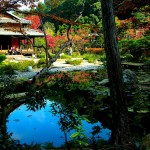 The True Spirit Of Japanese Gardens (38)