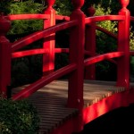 The True Spirit of Japanese Gardens (7)