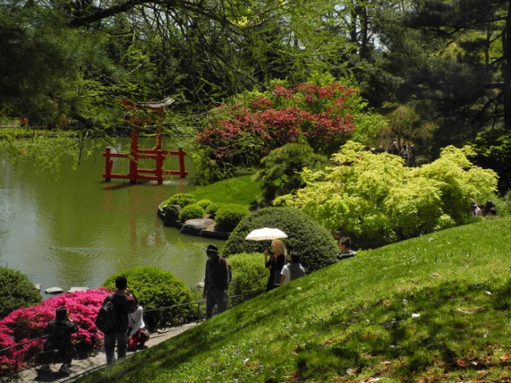 The True Spirit of Japanese Gardens (8)