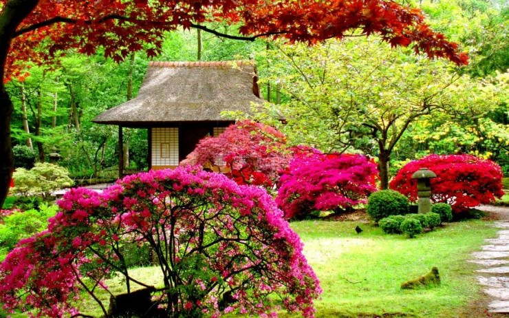 Tips for Japanese Garden Design (1)