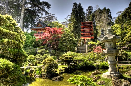 Tips for Japanese Garden Design (10)