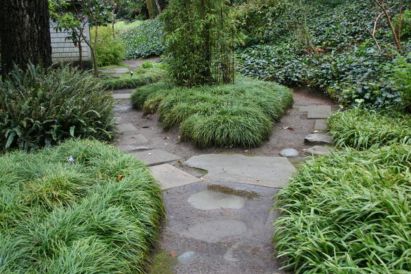 Tips for Japanese Garden Design (14)