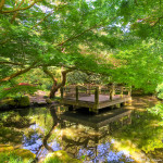 Tips for Japanese Garden Design (26)