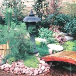 Tips for Japanese Garden Design (27)