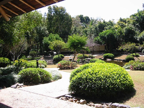 Tips for Japanese Garden Design (32)