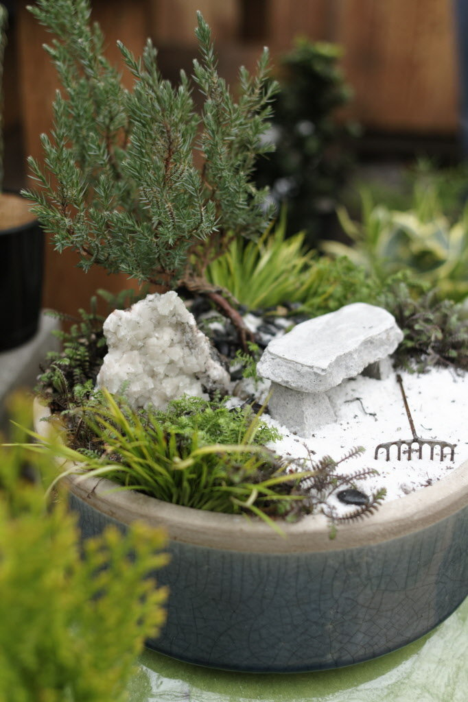 Tips in Creating a Zen Garden (17)