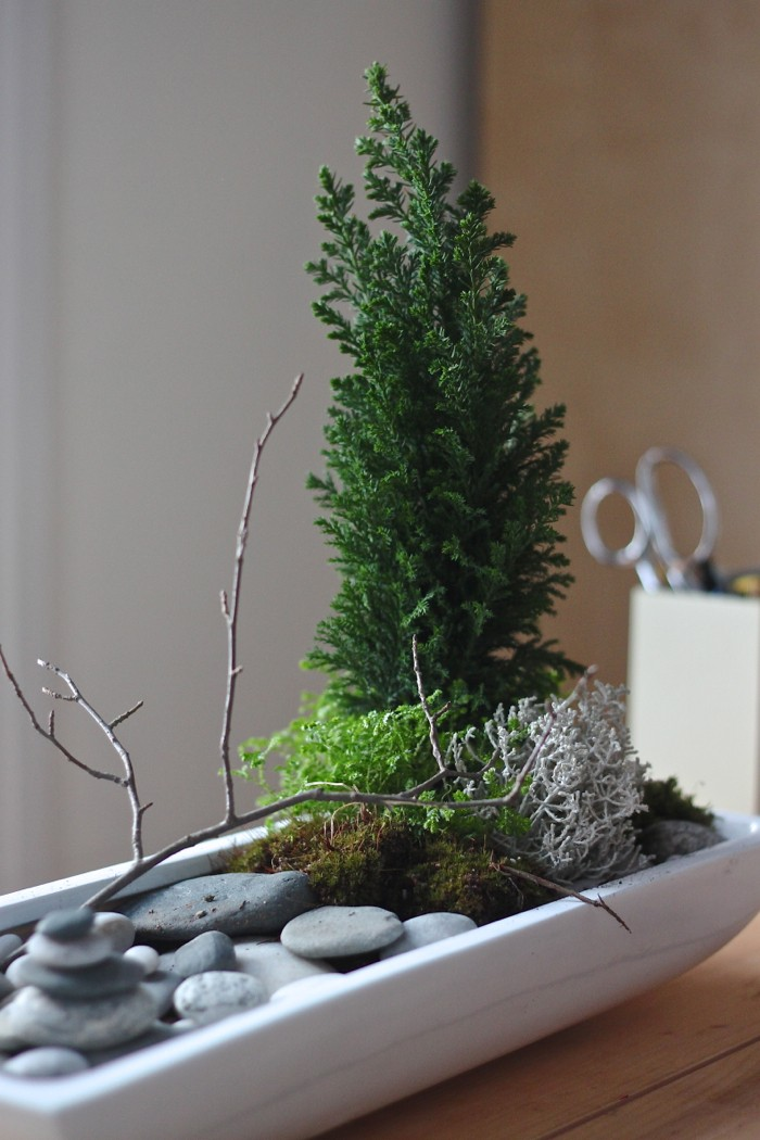 Tips in Creating a Zen Garden (4)